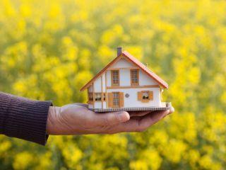 Haustypen Und Ihre Eigenschaften