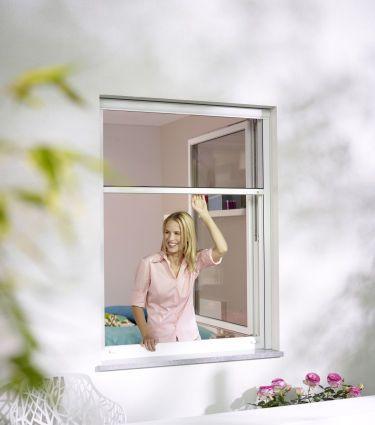 wespennest am haus wespennest entfernen lassen umsiedeln haus garten dach kosten wtf. Black Bedroom Furniture Sets. Home Design Ideas