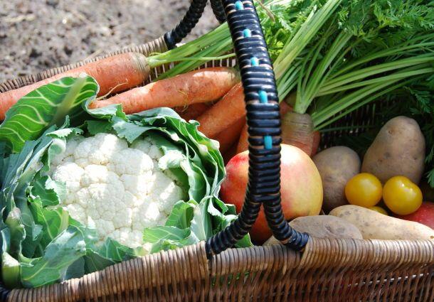 Gemüsegarten Anlegen - Bauemotion.de Gemusegarten Anlegen Tipps Tricks Ernte
